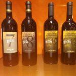 La Historia del Vino Golfo
